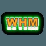 Luzi Host – Revenda de hospedagem Linux WHM neon